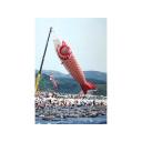 記事ID 201204171731: 日本童話祭 2 - 情報登録日: [20120417] / 情報更新日: [20120417]