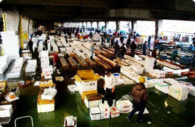 鹿児島魚類市場